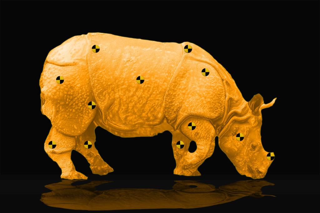 crasht test rhino Salzhaus FC